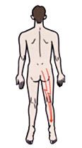 腰部脊柱管_01